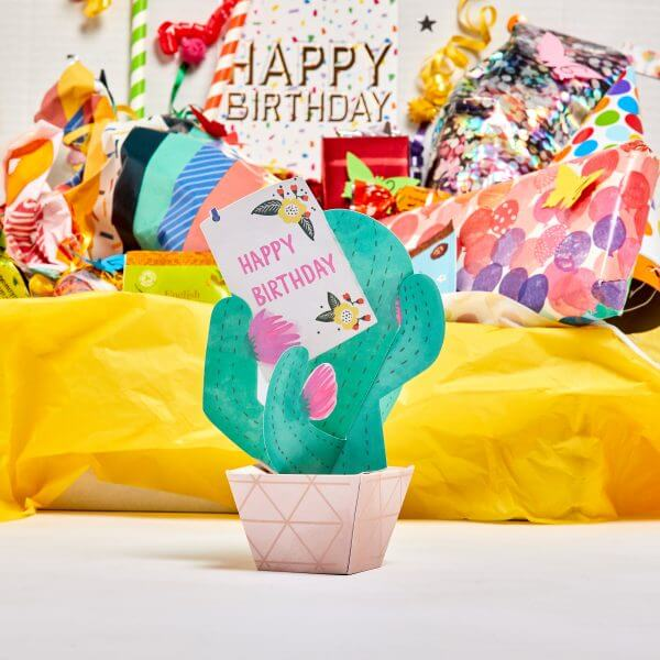 happy birthday cactus and gifts